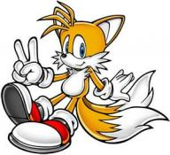 Tails the fox's picture