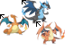 Charizards & CO.