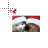 Christmas Kittens with Santa Hats Precision Select Preview
