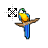 Macaw resize.ani Preview