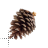 7 Christmas pinecone.ani Preview