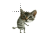 dancing-cat-smiley-emoticon.ani Preview