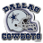 DallasCowboyslogo.ico Preview