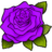 Rose-Purple.ico Preview
