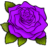 Rose-PurpleR.ico Preview