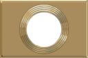 Gold Rings template